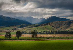 New-Zealand_0087